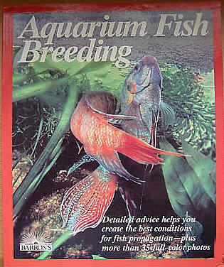 Breeding Aquarium Fish, Basic Breeding Questions For Beginners