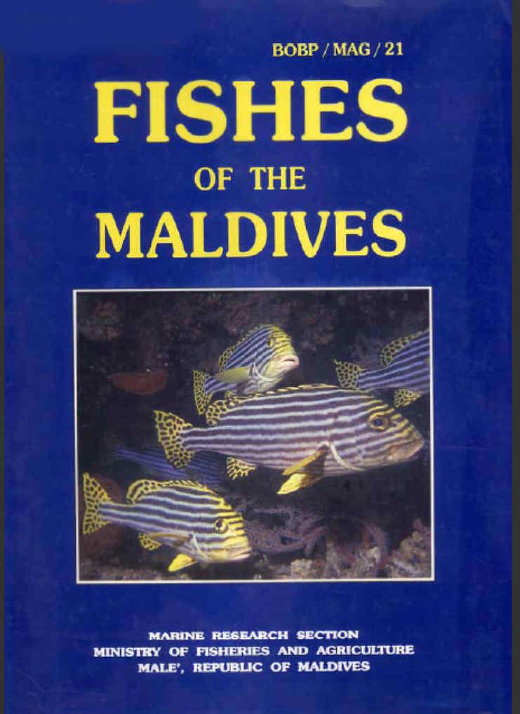 Indian ocean fish fishes maldives zanzibar fish diving books for Fishpond books