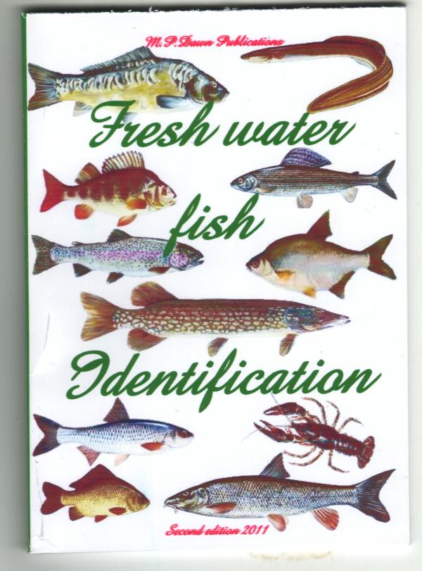 British Freshwater fish identification British freshwater fish species Rare Freshwater Fish