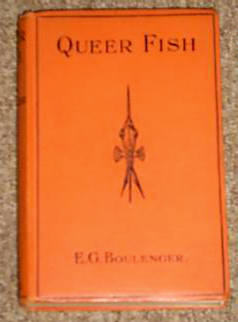 QUEER FISH by F.G.Boulenger