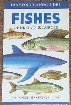 Fishes of Britain and Europe.Seafish pictures