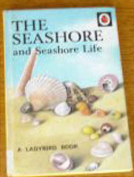 Ladybird book of the Seashore and Seashore Life.by Nancy Scot