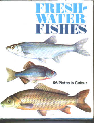 Freshwater Fishes Original 1968-1970 Edition by Spring Books.