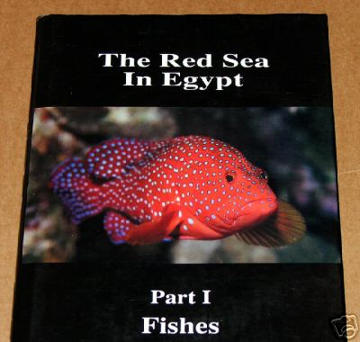 The Red Sea in Egypt - Part 1: FISHES