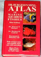Dr Burgess's Mini Atlas of Marine Aquarium Fishes