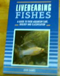 Livebearing Fishes