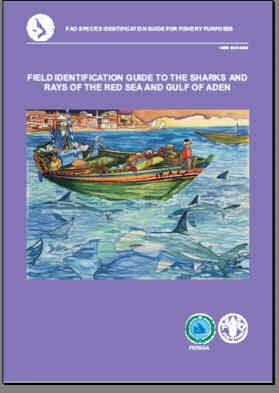 Field Identification Guide to the Sharks and Rays of the Red Sea and Gulf