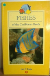 Fishes of the Caribbean Reefs , The Bahamas and bermuda