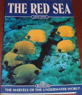 The Red Sea. The Marvels of the Underwater World by Andrea Ghisotti.