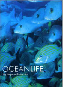 OCEANLIFE. By Sally Morgan